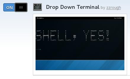drop-down-terminal